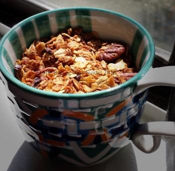 Coconut Pecan Oat Granola