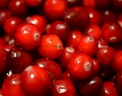 Cranberry Sauce 1 © The Baking Tour Guide